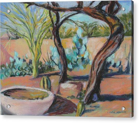 Dancing Mesquite Trees Acrylic Print