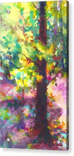 Acrylic Print featuring the painting Dappled - Light Through Tree Canopy by Talya Johnson