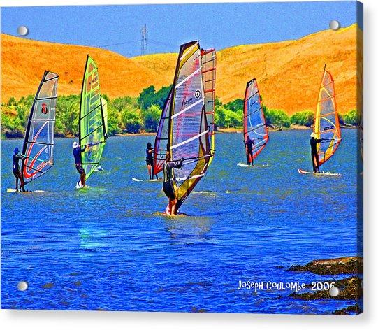 Delta Water Wings Acrylic Print