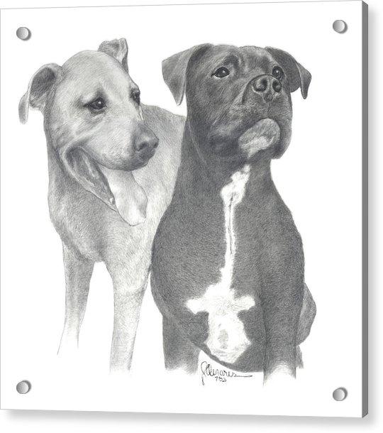 Dippy And Muggs Acrylic Print