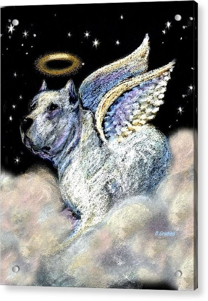Dogo Argentino Angel