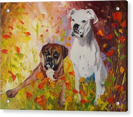 Dogs Painting Fine Art By Ekaterina Chernova Acrylic Print