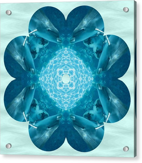 Dolphin Kaleidoscope Acrylic Print