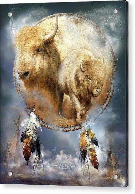 Dream Catcher - Spirit Of The White Buffalo Acrylic Print