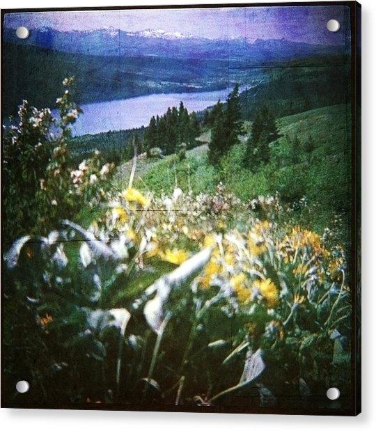 Dream In East Glacier Acrylic Print