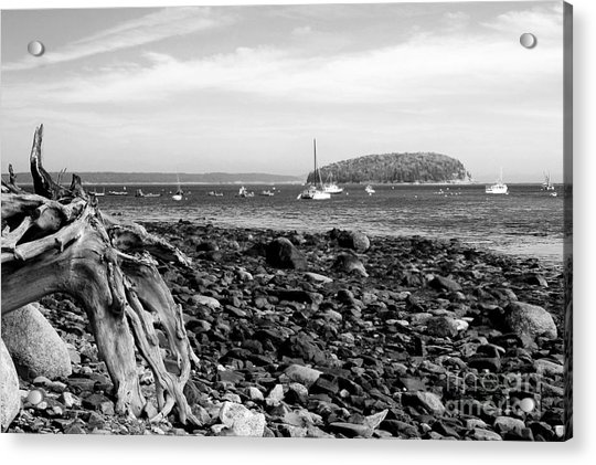 Acrylic Print featuring the photograph Driftwood And Harbor by Jemmy Archer