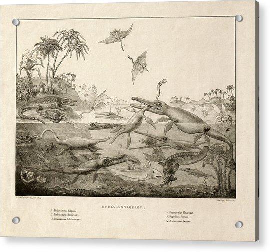 Duria Antiquior Acrylic Print