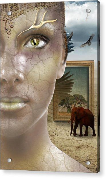 Elephant Dream Acrylic Print