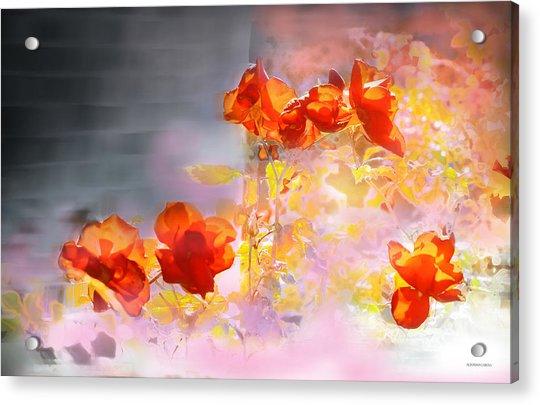 En La Pared Acrylic Print