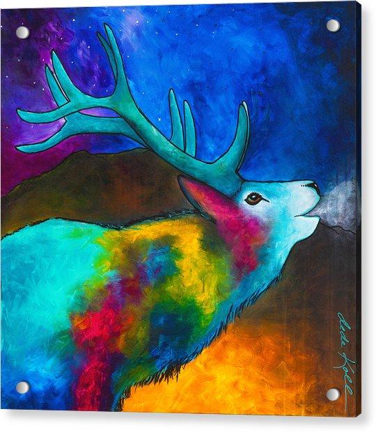 Evening Elk Acrylic Print