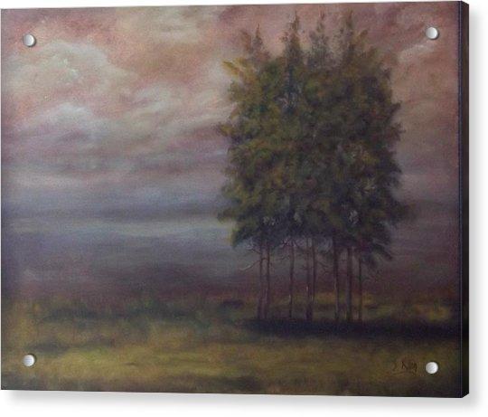 Family Of Trees Acrylic Print