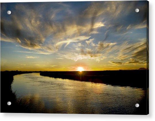 Feathered Sunset Acrylic Print