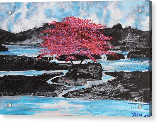 Finding Beauty In Solitude Acrylic Print