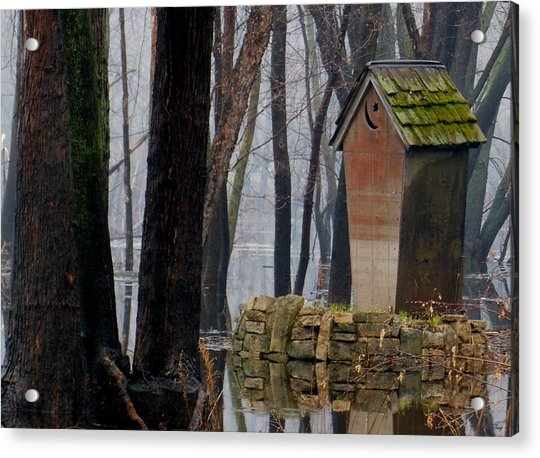 Foggy Swamp Outhouse Acrylic Print