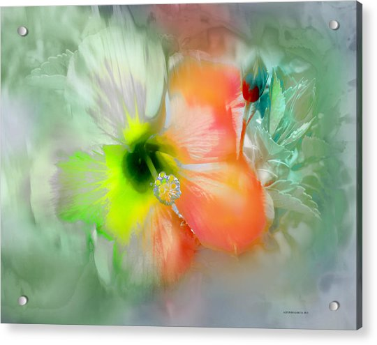 Flor De Ayamonte Acrylic Print