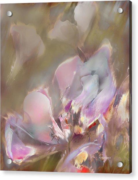 Flor De Verano Acrylic Print