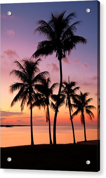 Florida Breeze Acrylic Print