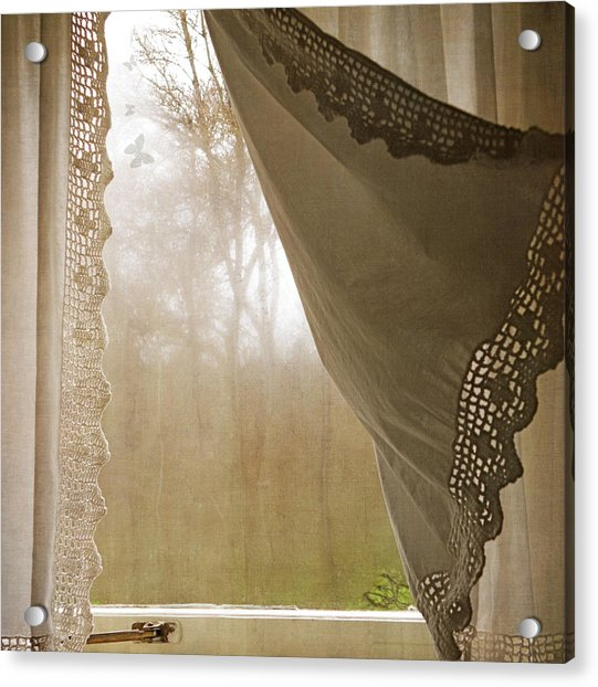 Acrylic Print featuring the photograph Forest Through The Window by Sally Banfill