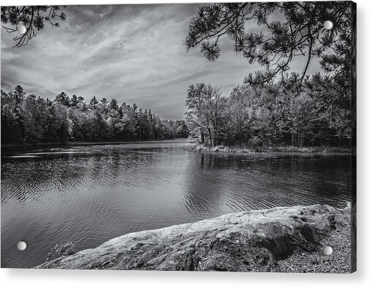 Fork In River Bw Acrylic Print