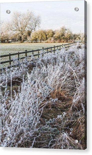 Frosty Landscape Acrylic Print