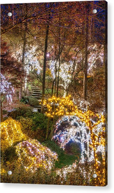 Golden Valley - Full Height Acrylic Print