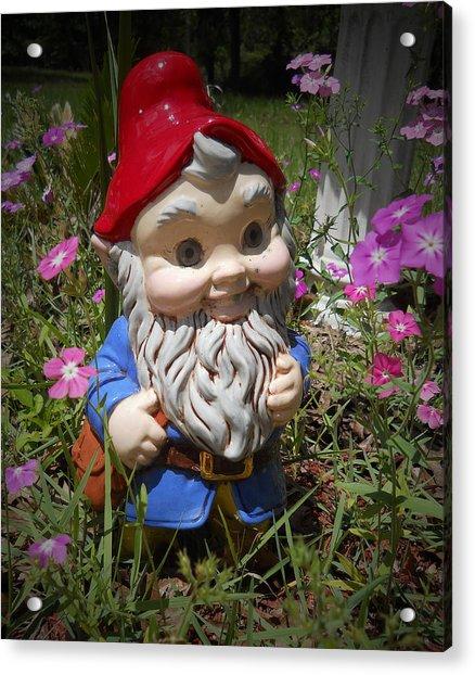 Garden Gnome Acrylic Print