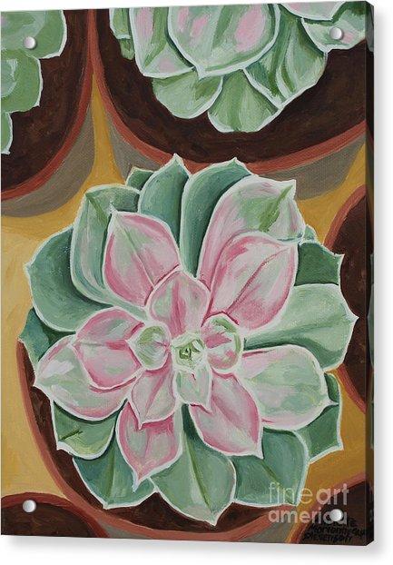 Garden Rossette Acrylic Print
