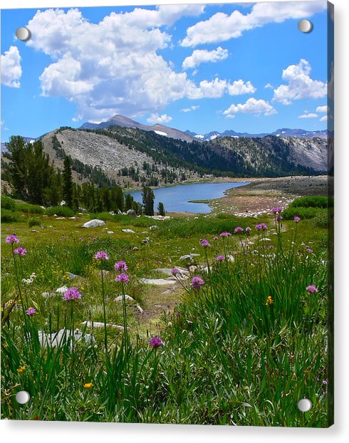 Gaylor Lakes And Wild Onions By Frank Lee Hawkins Acrylic Print