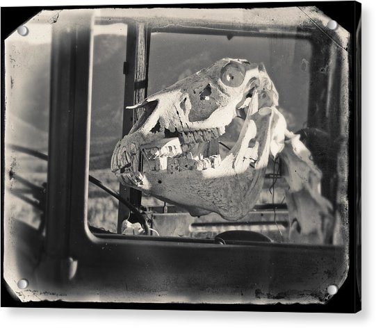 Acrylic Print featuring the photograph Ghost Car Of Equine Death by David Bailey