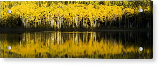 Golden Lake Acrylic Print