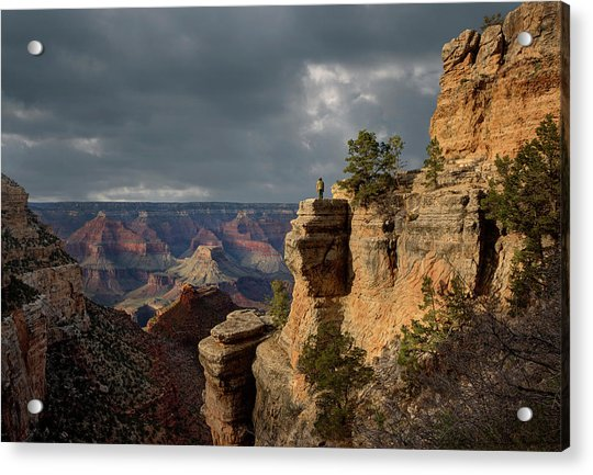 Grand Canyon National Park, Bright Acrylic Print by Ed Freeman
