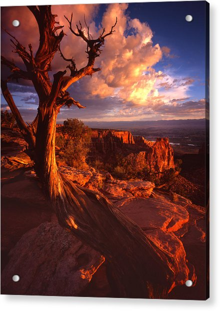 Grand View Point Sunrise Acrylic Print