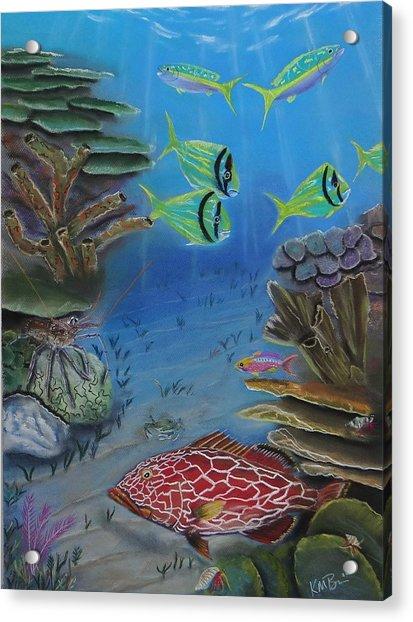 Grouper On The Reef Acrylic Print