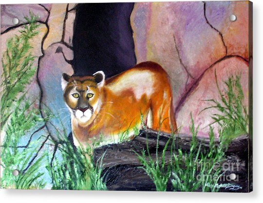 Guarding The Cave Acrylic Print
