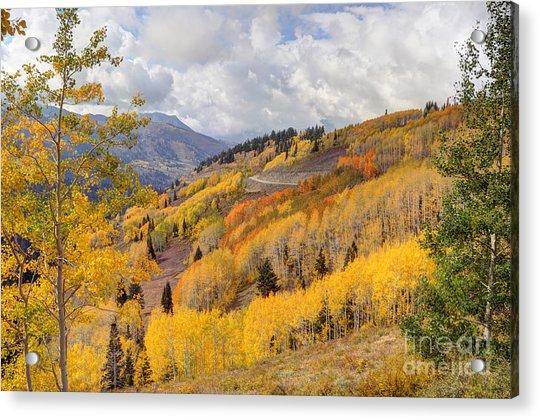 Guardsman Pass Aspen - Big Cottonwood Canyon - Utah Acrylic Print