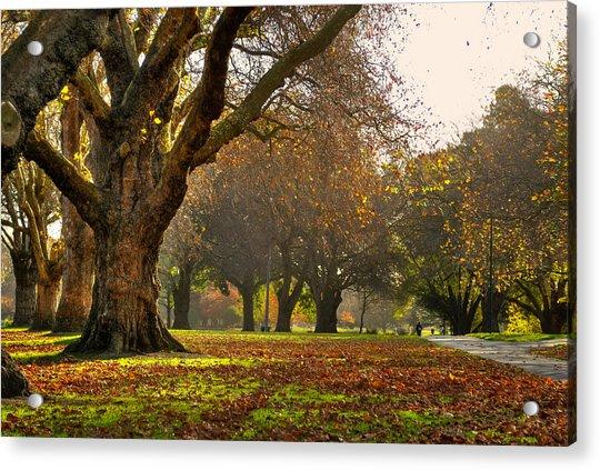 Hagley In Autumn Acrylic Print