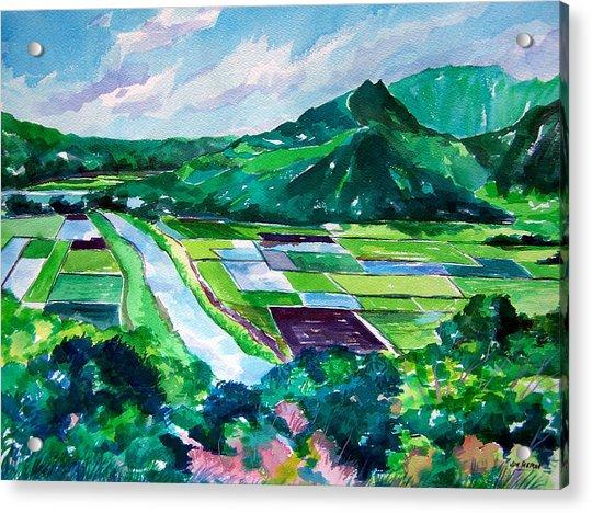 Hanalei From The Lookout Acrylic Print by Jon Shepodd