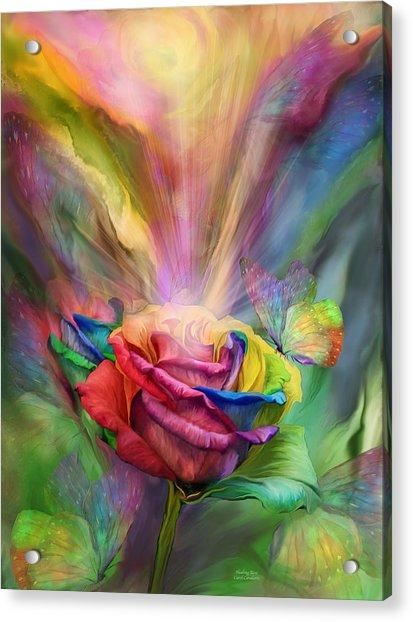 Healing Rose Acrylic Print