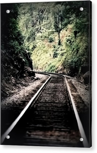 Hegia Burrow Railroad Tracks  Acrylic Print