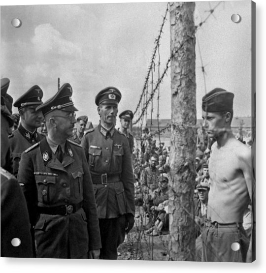 Heinrich Himmler, Head Of The Nazi Ss
