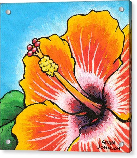 Hibiscus 04 Acrylic Print