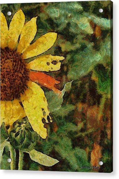 Imperfect Beauty Acrylic Print