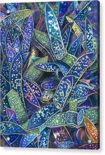 In The Conservatory - 6th Center - Indigo Acrylic Print