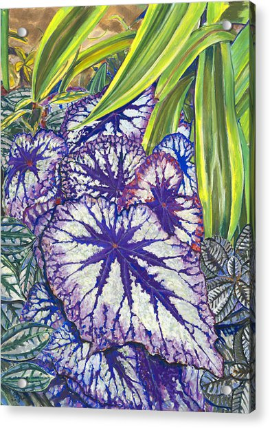 In The Conservatory-7th Center-violet Acrylic Print