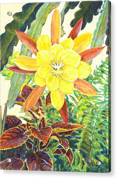 In The Conservatory - 3rd Center - Yellow Acrylic Print