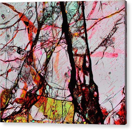 Jacob's Ladder Acrylic Print