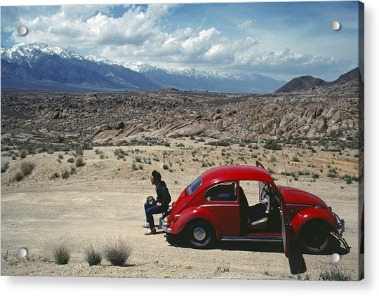 Acrylic Print featuring the photograph Kevin And The Red Bug by David Bailey