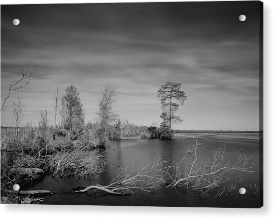 Lake Drummond Acrylic Print