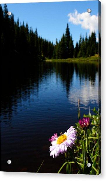 Lake Irene Acrylic Print