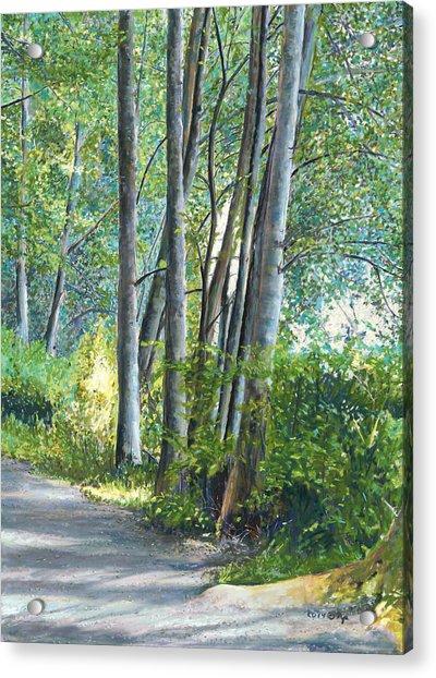 Lake Padden Series - Kathleen Keller Memorial Bench Acrylic Print